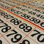 Studying Bingo Cards